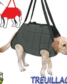 Quel est le meilleur harnais pour chien photo 3