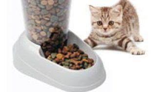 Quelles croquettes pour chat sont les meilleures photo 3